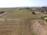 (For Sale) Land Agricultural Land  || Larissa/Larissa - 4.037 Sq.m, 27.000€