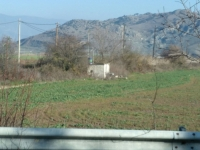 (For Sale) Land Agricultural Land     Larissa/Nessonas - 19.500 Sq.m, 50.000€